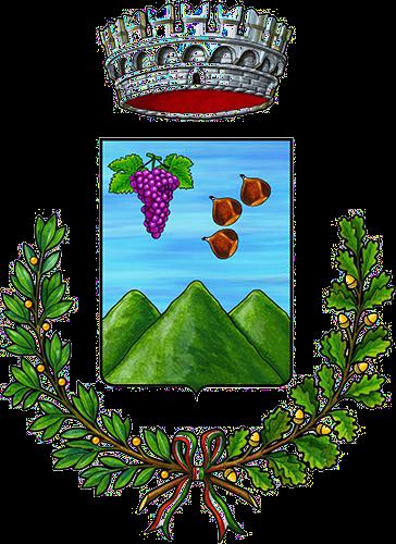 Logo COMUNE DI PALERMITI
